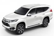 Mitsubishi pajero 2019 White Pearl