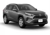 Toyota rav4 2019 Gray Metallic