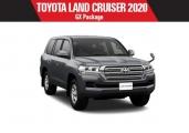 Toyota land_cruiser 2020 Gray Metallic